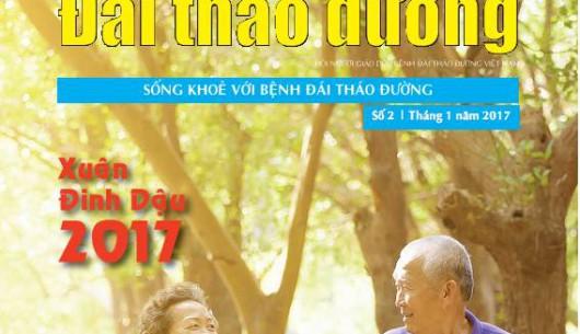 Tạp chí Đái tháo đường số 2