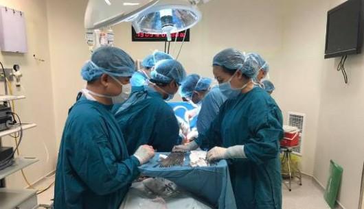 Phối hợp liên viện cứu sống bệnh nhân đa chấn thương nặng
