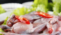 Thịt cóc – Dùng thế nào để tránh ngộ độc?