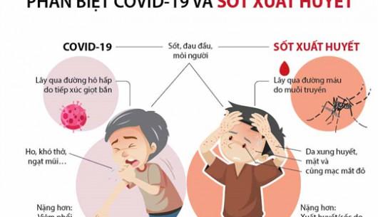Dấu hiệu nhận biết sốt xuất huyết và Covid-19